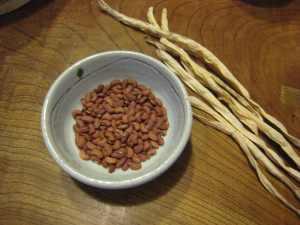 ささげの豆
